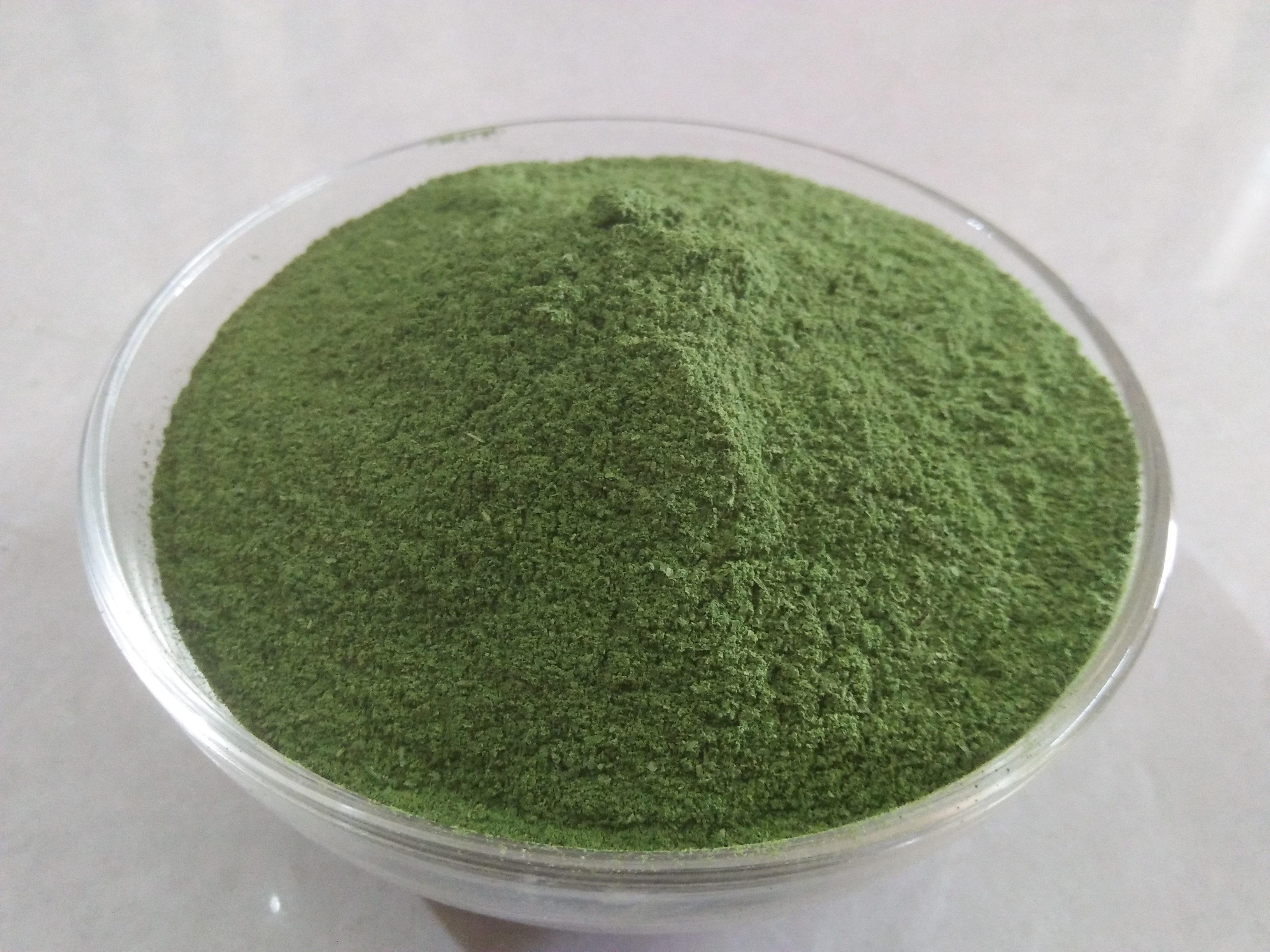 Moringa Products - Solar Dried Leaves, Tea Cut, Powder, Oil Etc., In Bulk Supply.