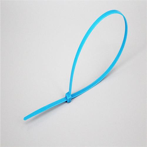 2.5x100 Nylon Cable Ties