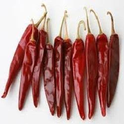 Dried Chilli Exporter