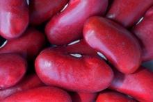 New Crop Thailand Red Kidney Beans