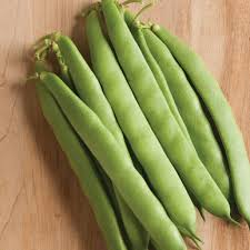 Vanilla Beans,Sisal Fibre,Charcoal